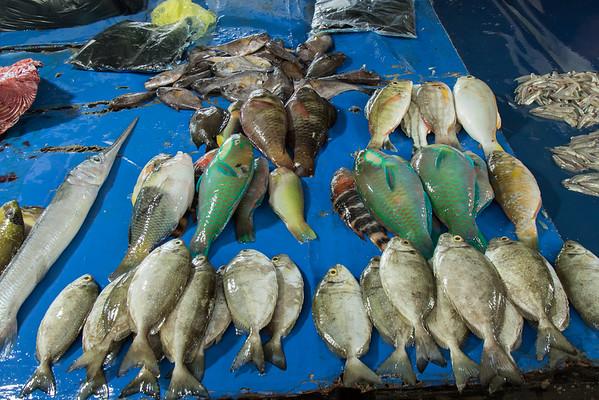 Reef fish at Sorong market