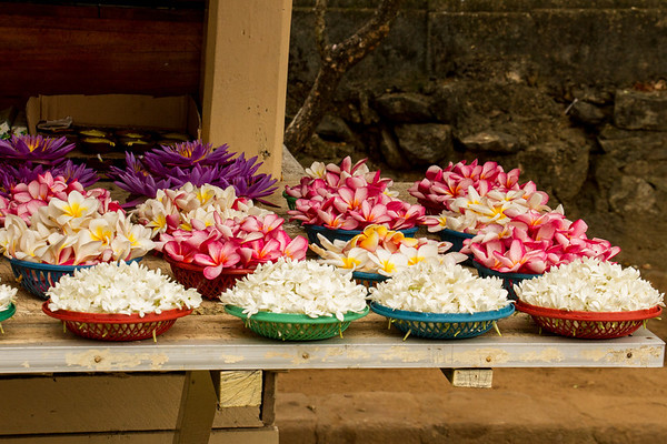 Flower offerings at Temple of the Tooth