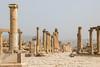 The Jerash cardo