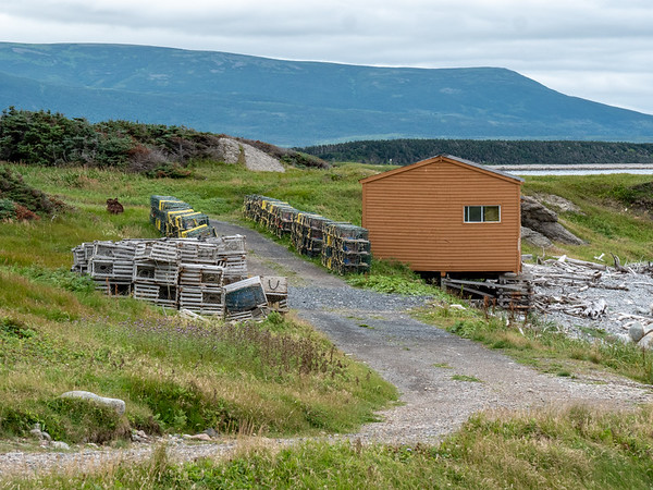 Lobster traps at Broom Point