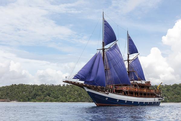 SeaSafar8 under sail