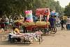 Rose garden vendors
