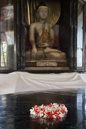 Offering to Buddha