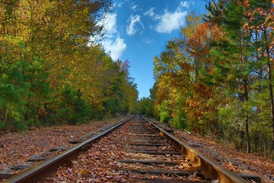 Tracks in the Fall - Little Rock Rivertrail