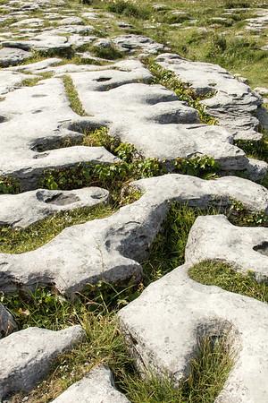 Limestone in The Burren