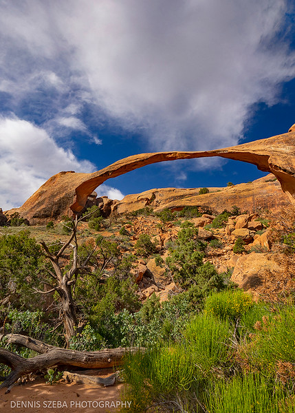 Landscape Arch.  Arches National Park,Utah, USA. 2019