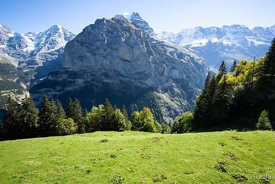 Swiss, Alps