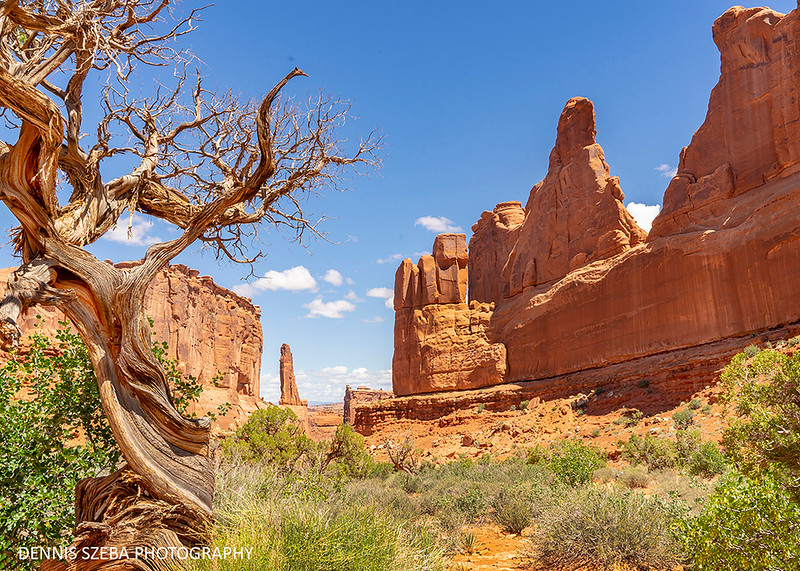 Arches National Park, 2019