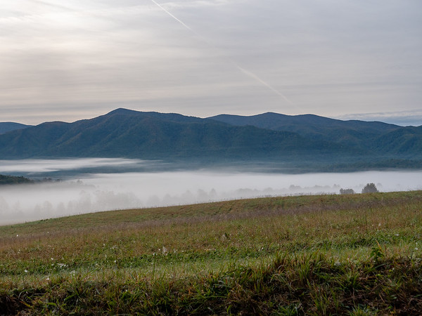 Cade's Cove fog bank