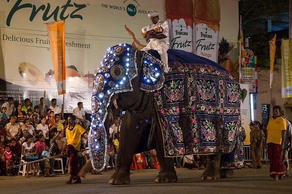 Navam Maha Perahera festival