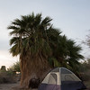 Camp Site, Salton Sea, Ca