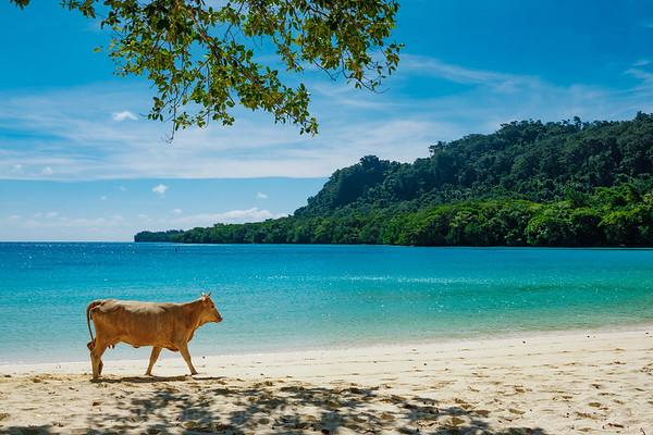Vanuatu, Santo, Champaign Beach