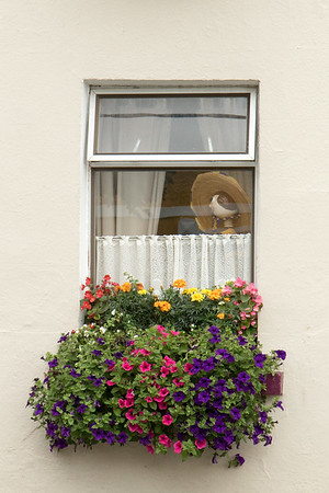 Kilfenora window