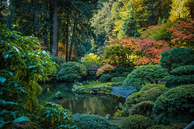 Fall at the Gardens