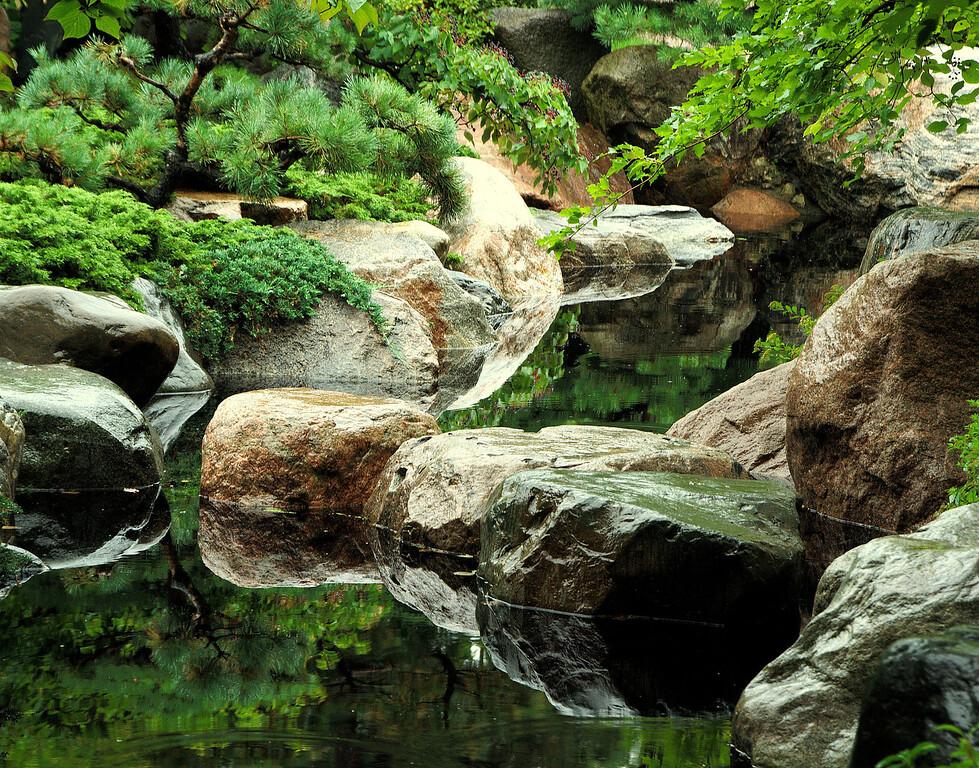 Masami's Garden