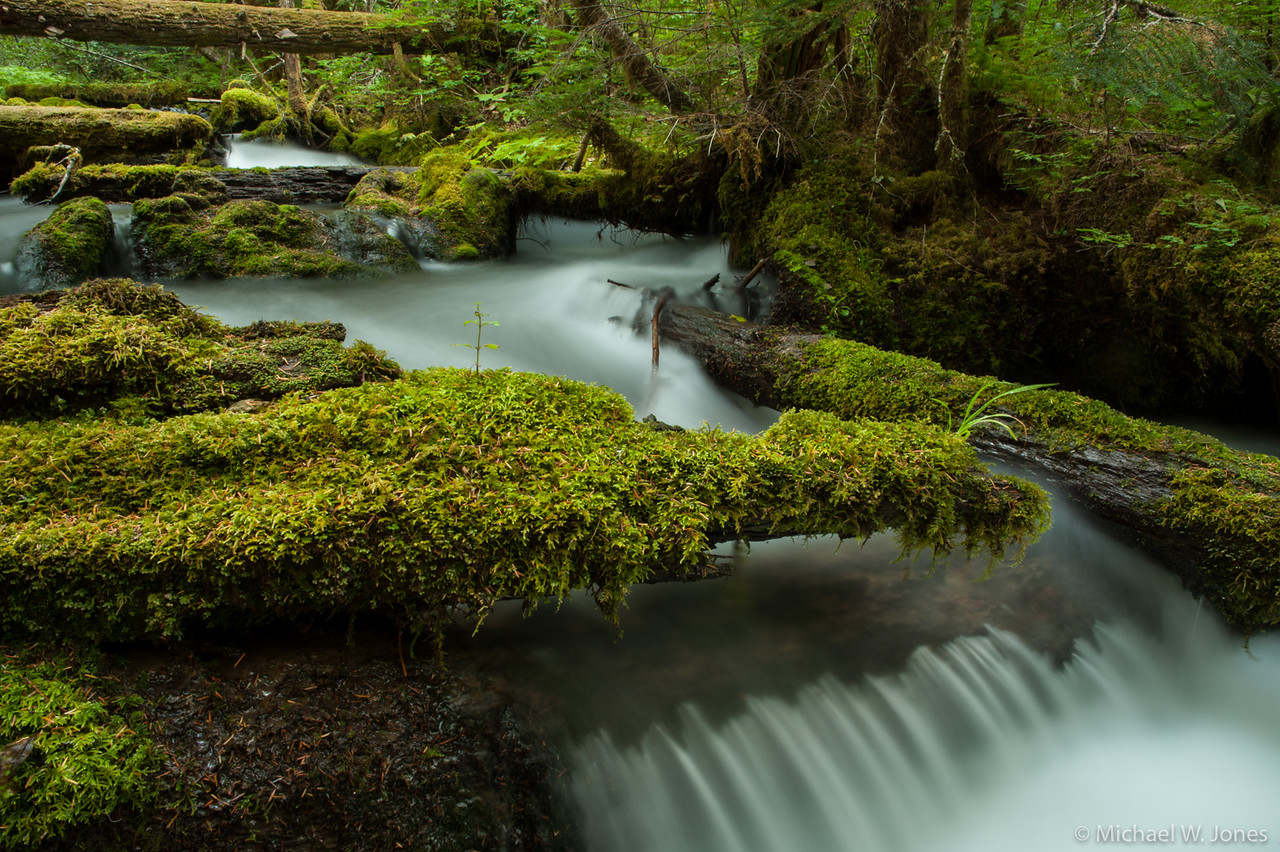 Little Zigzag Falls, OR
