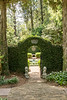 Ivy- covered garden entrance