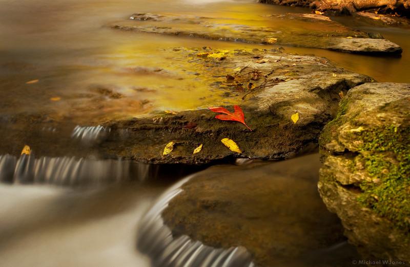 Upstream from Burgess Falls, TN