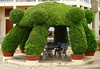Topiary Gazebo in Cambodia