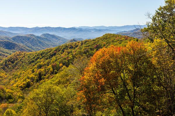 Smoky Mountain early autumn