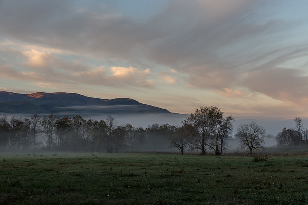 Cade's Cove morning fog