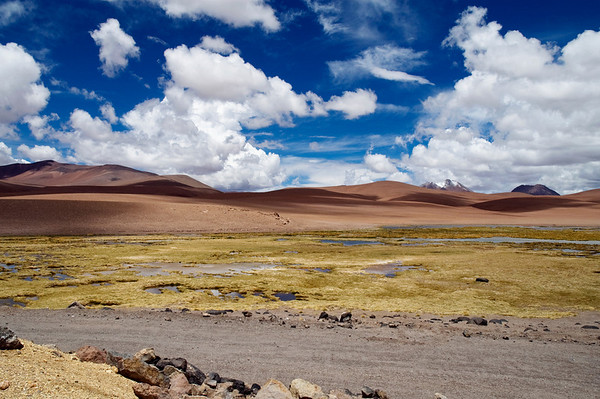 Chilean Andes, Near San Pedro De Atacama. This was taken on a drive across the Andes from Chile to Argentina.  We spent the day in immersed in one of the most jaw dropping landscapes I have ever seen.  The scenery seemed to change with every turn and the dark blue sky at high altitude made for an amazing back drop.  From flamingo filled lakes, to 15 meter tall cactus, we saw it all. The best drive of the 20,000 mile road trip from Austin Texas.
