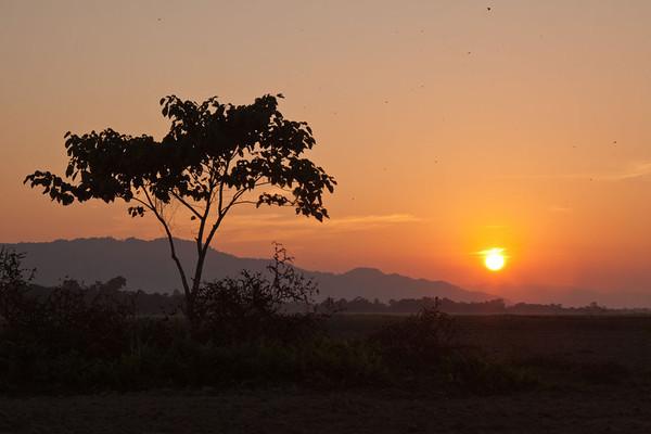 Assam sunrise