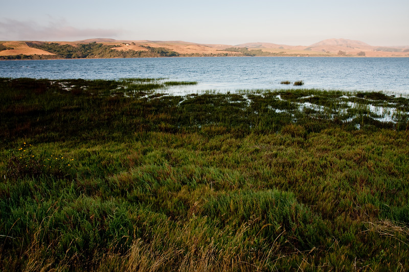 Tomales Bay.  The San Andreas Fault created this bay and runs deep underground at this point.