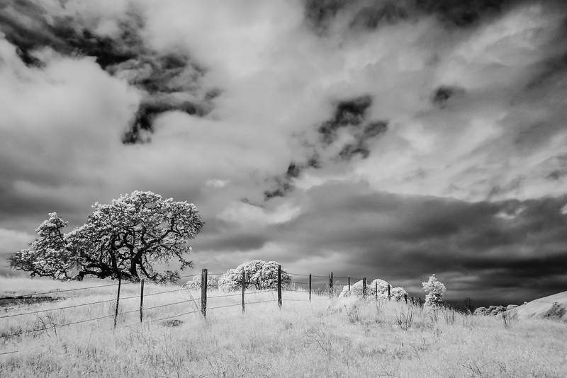 CentralCalifornia2015-0619-Edit