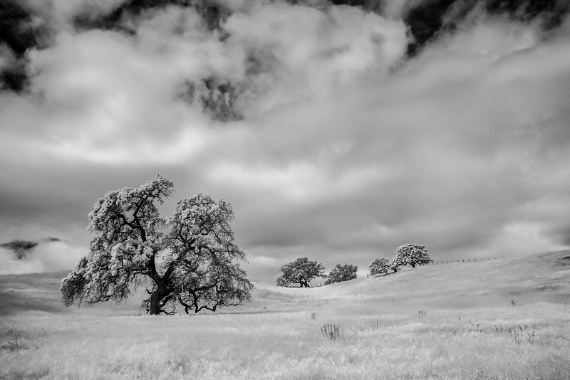 CentralCalifornia2015-0627-Edit