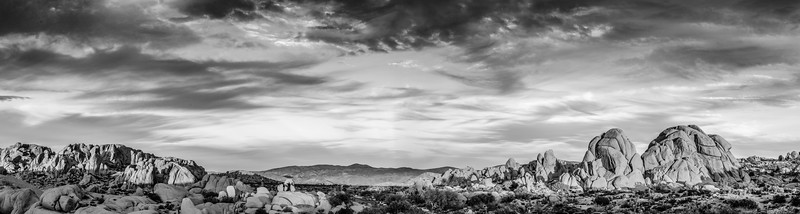 JoshuaTree2016-094-Pano-Edit