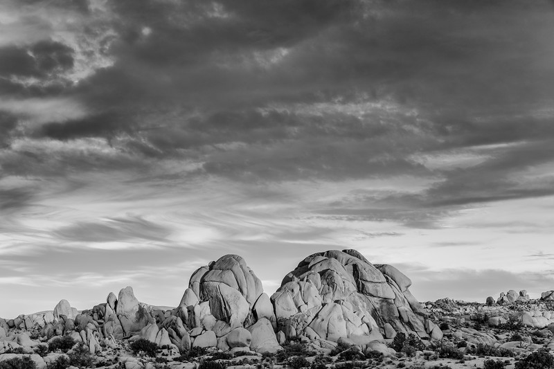 JoshuaTree2016-101-Edit