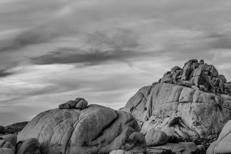 JoshuaTree2015-01-Edit