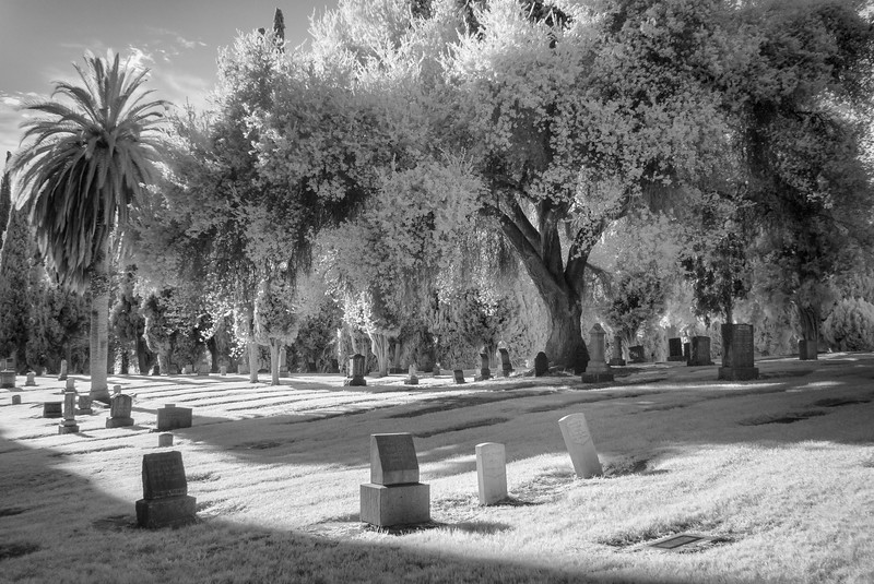 Infrared2014-0032-Edit