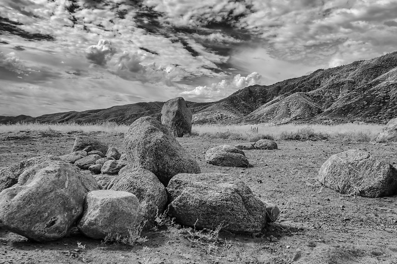 Infrared2014-0050-Edit