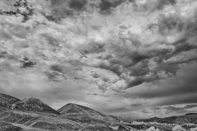 Infrared2014-0036-Edit