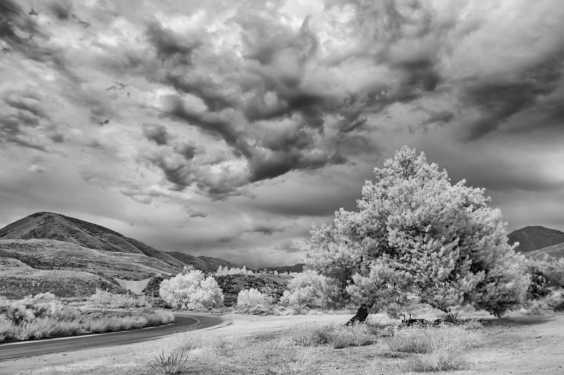 Infrared2014-0038-Edit