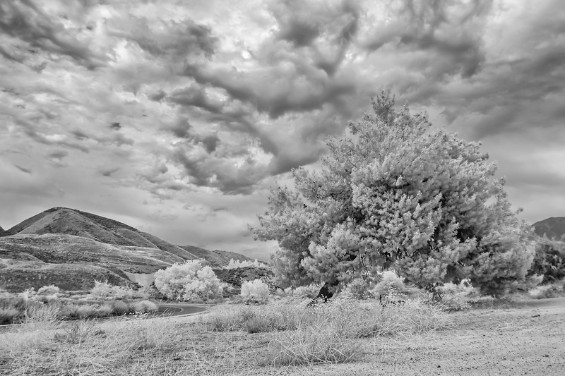 Infrared2014-0040-Edit