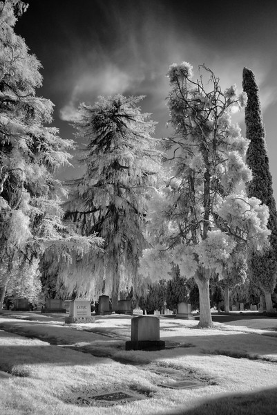Infrared2014-0030-Edit