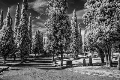 Infrared2014-0001-Edit