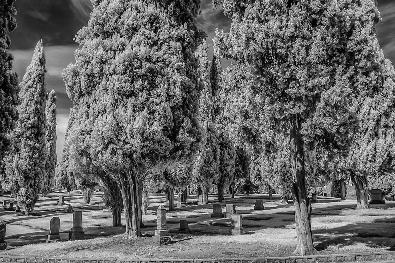 Infrared2014-0002-Edit