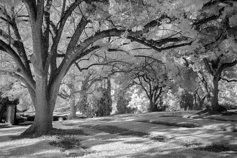 Infrared2014-0028-Edit