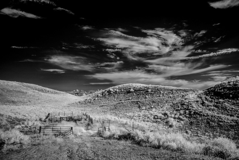 Infrared2014-0025-Edit