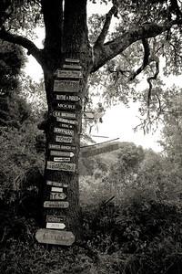 San Luis Obispo 2006-08