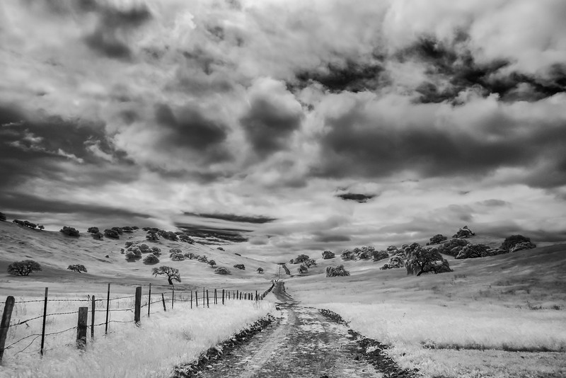 CentralCalifornia2015-0622-Edit