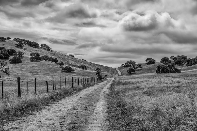 CentralCalifornia2015-0655-Edit