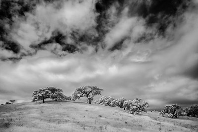 CentralCalifornia2015-0623-Edit