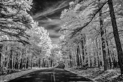 Arkansas2015-151-Edit-2
