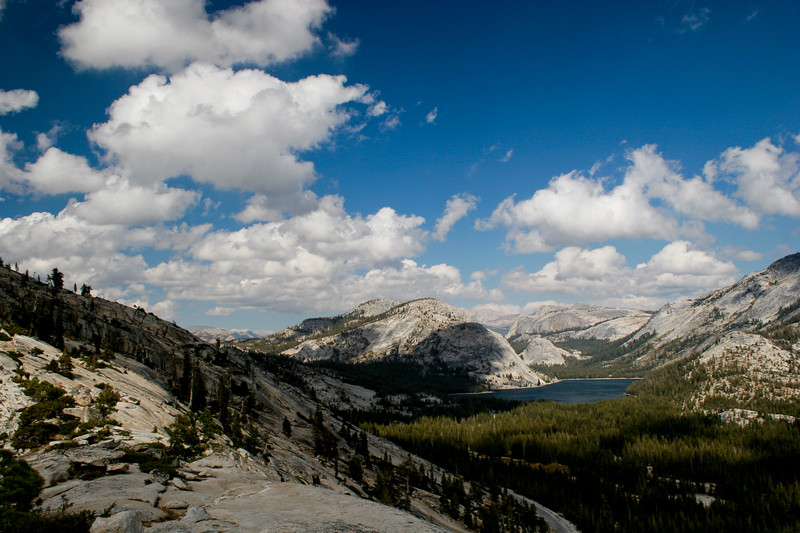 Yosemite 2005-20
