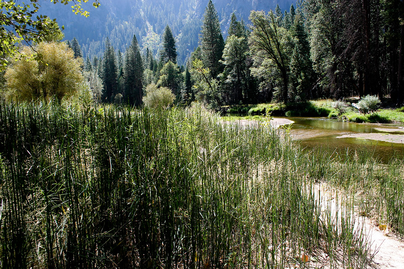Yosemite 2005-057